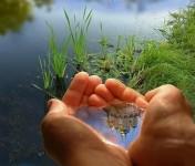 Конкурсы,фестивали :: Краевой смотр-конкурс «Зеркало природы»